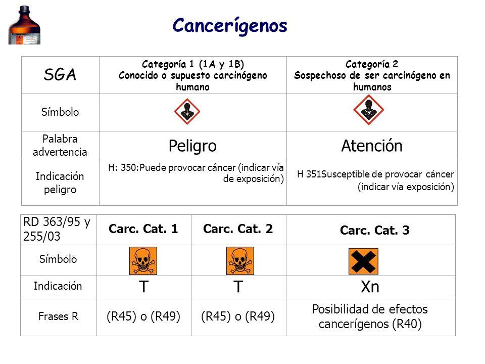 Cancerígenos SGA Peligro Atención T Xn RD 363/95 y 255/03 Carc. Cat. 1