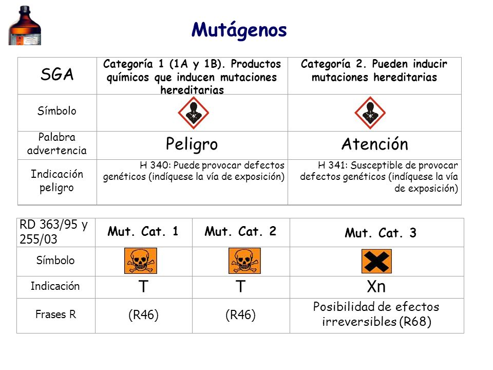 Categoría 2. Pueden inducir mutaciones hereditarias