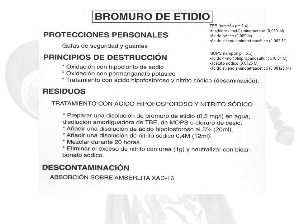 TBE (tampón pH 8,4) tris(hidroximetil)aminometano (0,089 M) ácido bórico (0,089 M) ácido etilendiaminotetraacético (0,002 M)