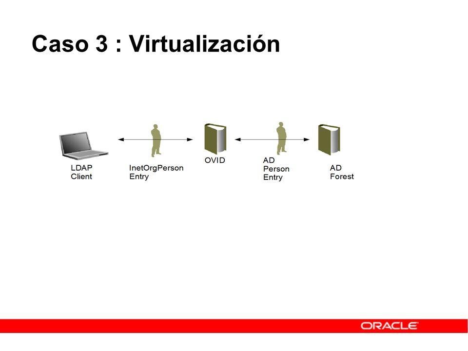 Caso 3 : Virtualización