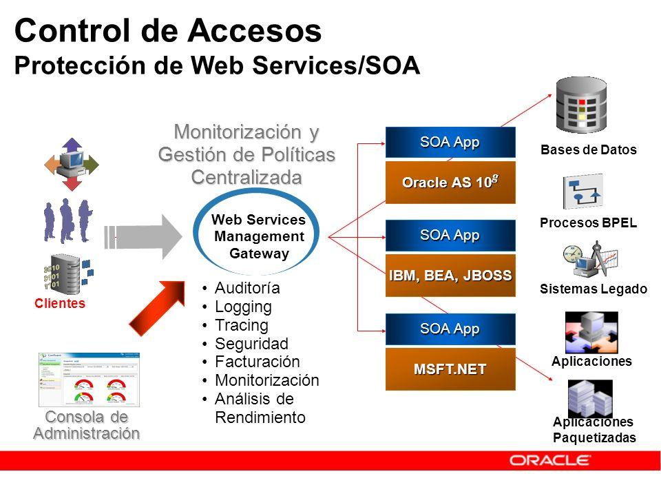 Control de Accesos Protección de Web Services/SOA