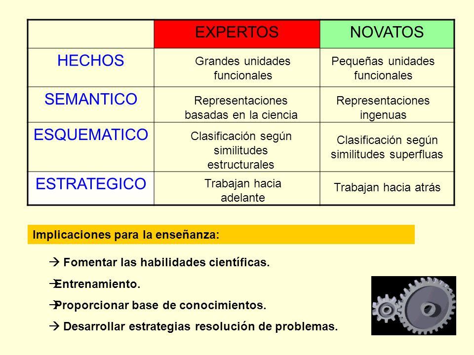 EXPERTOS NOVATOS HECHOS SEMANTICO ESQUEMATICO ESTRATEGICO