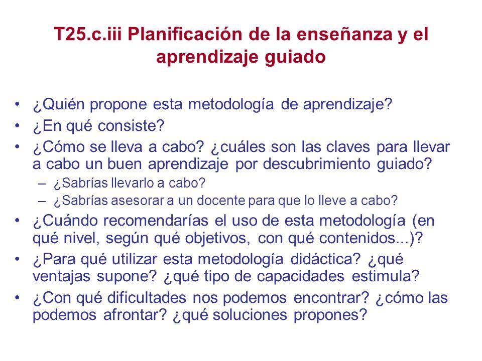 T25.c.iii Planificación de la enseñanza y el aprendizaje guiado