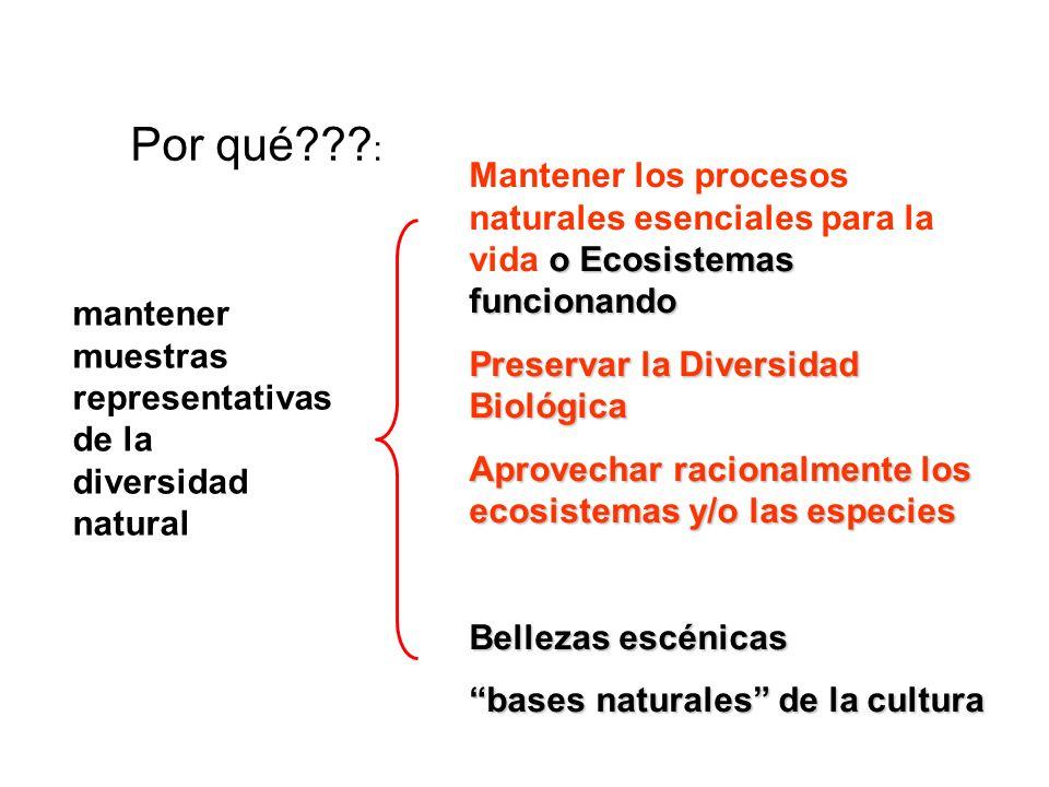 Por qué : Mantener los procesos naturales esenciales para la vida o Ecosistemas funcionando. Preservar la Diversidad Biológica.