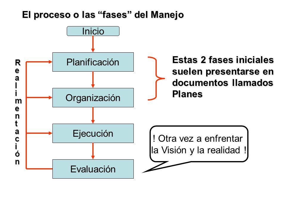 El proceso o las fases del Manejo