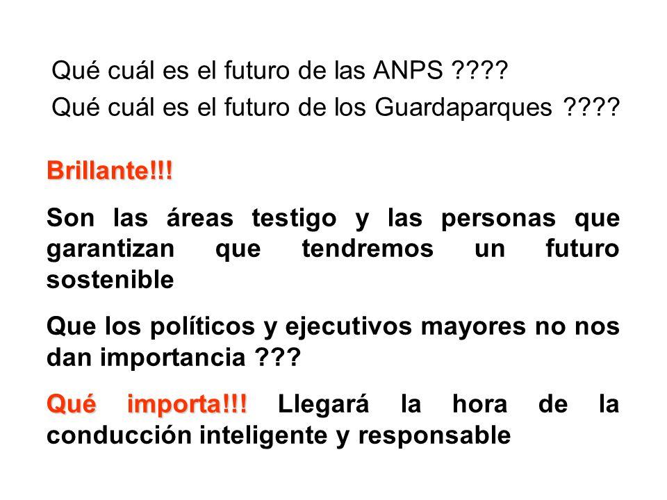 Qué cuál es el futuro de las ANPS