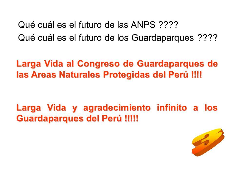 3 Qué cuál es el futuro de las ANPS