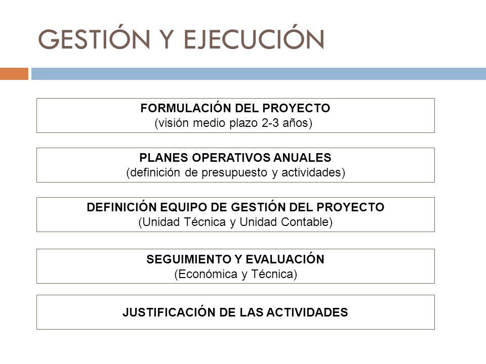 GESTIÓN Y EJECUCIÓN FORMULACIÓN DEL PROYECTO
