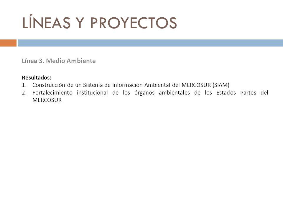 LÍNEAS Y PROYECTOS Línea 3. Medio Ambiente Resultados: