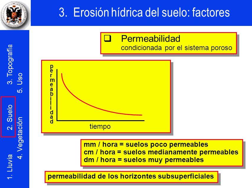 q Permeabilidad condicionada por el sistema poroso tiempo