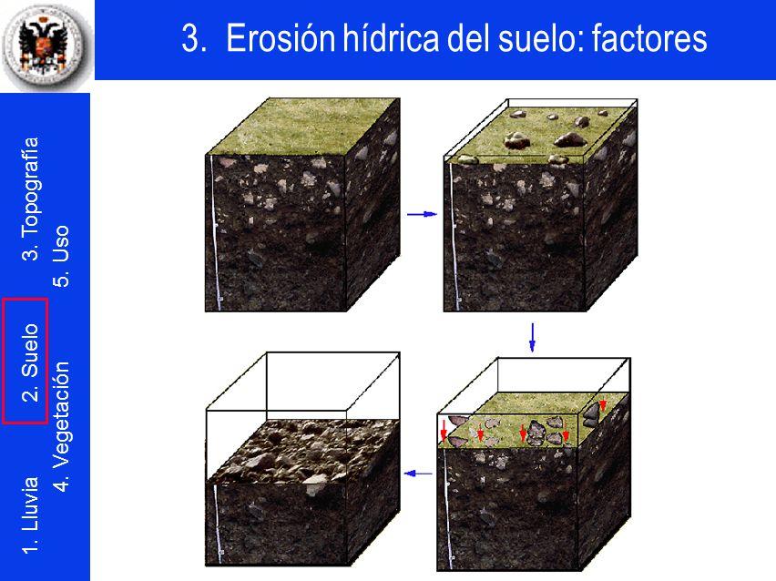 Al erosionarse las fracciones finas, las gravas y las piedras van concentrándose sobre la superficie del terreno.