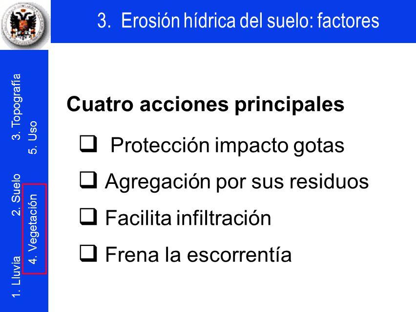 Cuatro acciones principales