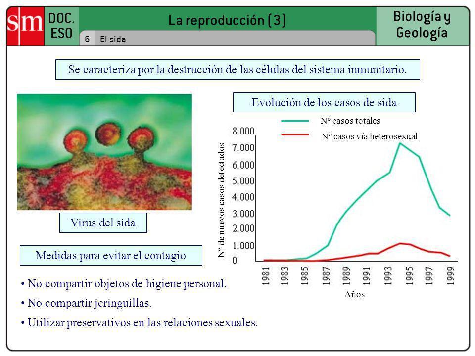 Evolución de los casos de sida