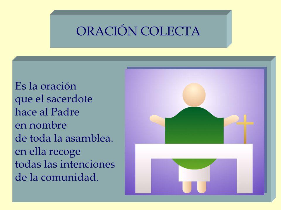 ORACIÓN COLECTA Es la oración que el sacerdote hace al Padre en nombre