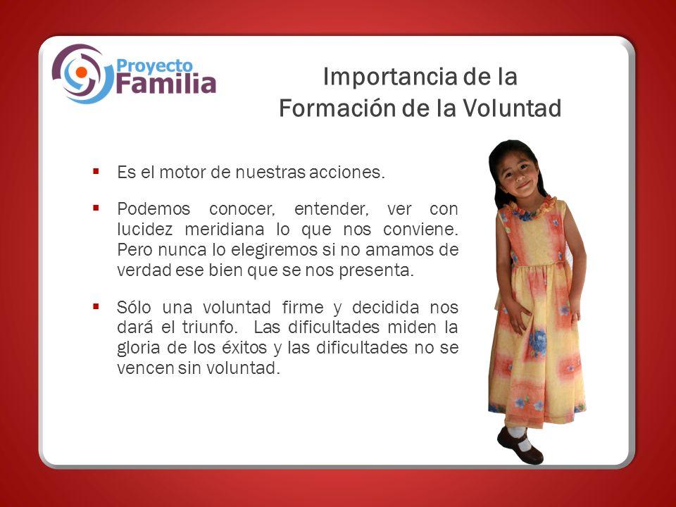 Importancia de la Formación de la Voluntad