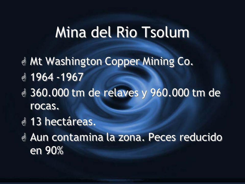 Mina del Rio Tsolum Mt Washington Copper Mining Co. 1964 -1967