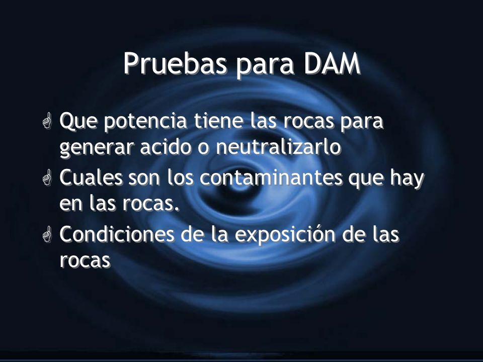 Pruebas para DAM Que potencia tiene las rocas para generar acido o neutralizarlo. Cuales son los contaminantes que hay en las rocas.