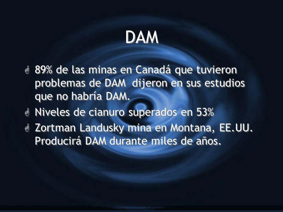 DAM 89% de las minas en Canadá que tuvieron problemas de DAM dijeron en sus estudios que no habría DAM.