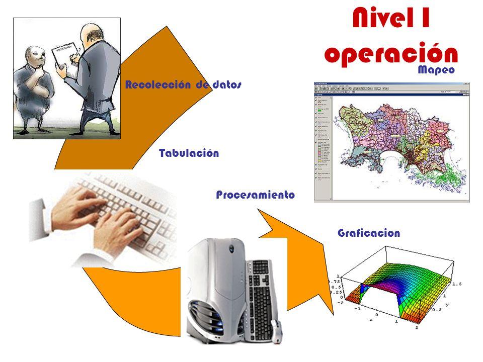 Nivel I operación Mapeo Recolección de datos Tabulación Procesamiento