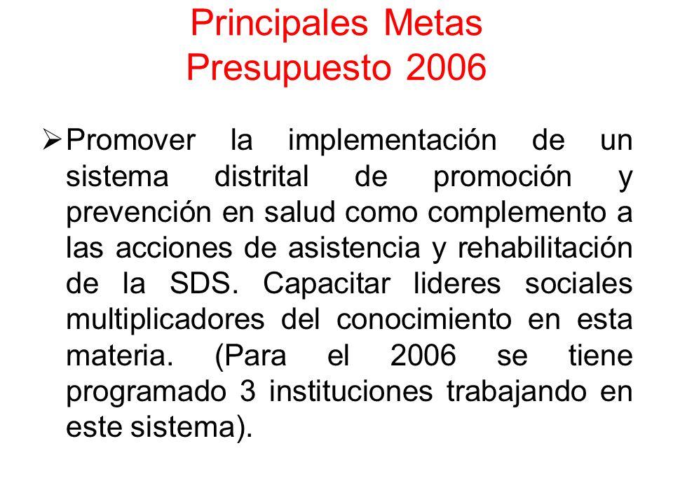 Principales Metas Presupuesto 2006