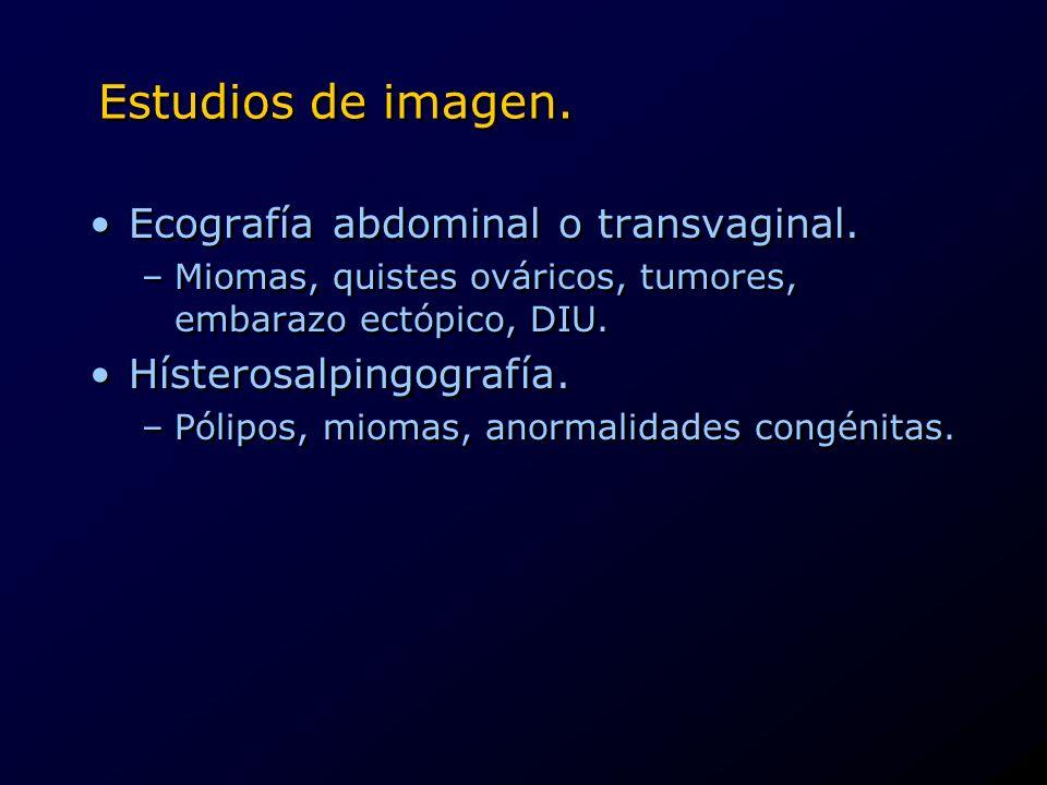 Estudios de imagen. Ecografía abdominal o transvaginal.