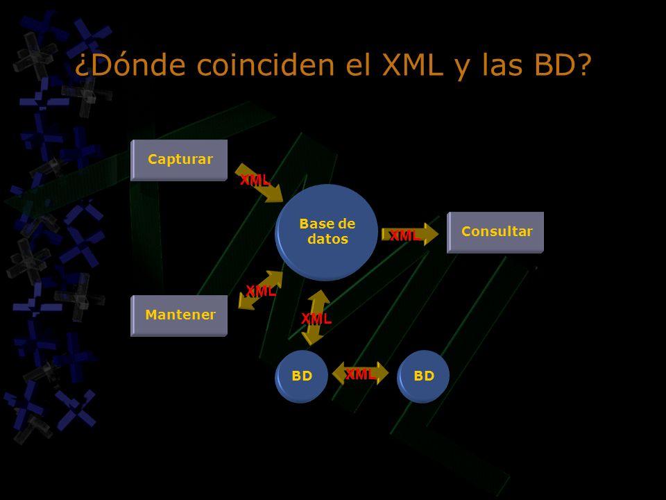 ¿Dónde coinciden el XML y las BD