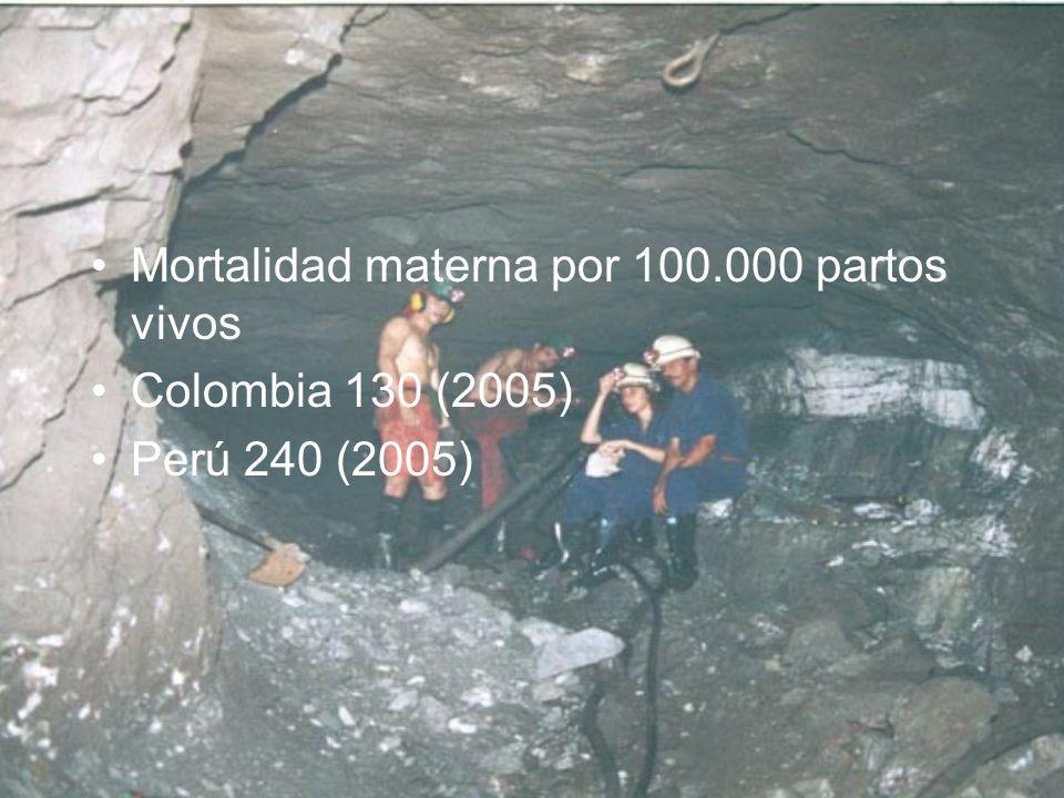 Mortalidad materna por 100.000 partos vivos