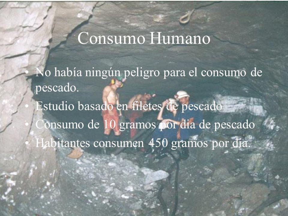 Consumo Humano No había ningún peligro para el consumo de pescado.