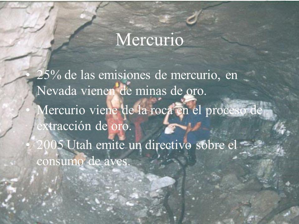 Mercurio 25% de las emisiones de mercurio, en Nevada vienen de minas de oro. Mercurio viene de la roca en el proceso de extracción de oro.