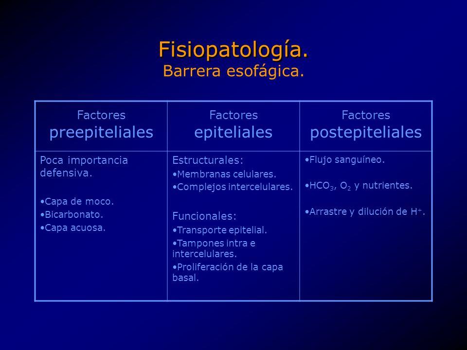 Fisiopatología. Barrera esofágica. Factores preepiteliales