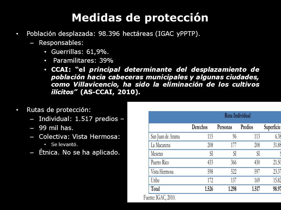 Medidas de protección Población desplazada: 98.396 hectáreas (IGAC yPPTP). Responsables: Guerrillas: 61,9%.