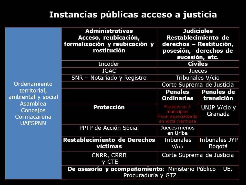 Instancias públicas acceso a justicia
