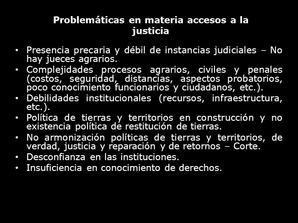Problemáticas en materia accesos a la justicia