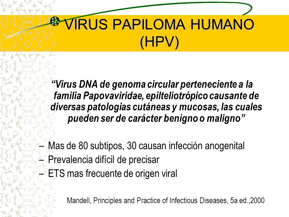 VIRUS PAPILOMA HUMANO (HPV)