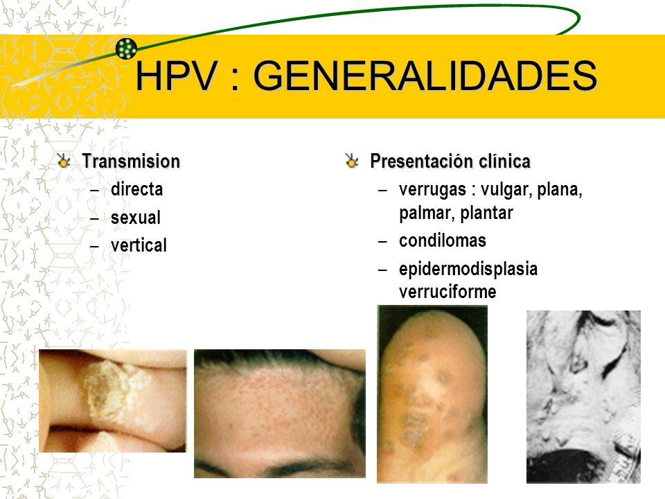 HPV : GENERALIDADES Transmision Presentación clínica directa sexual