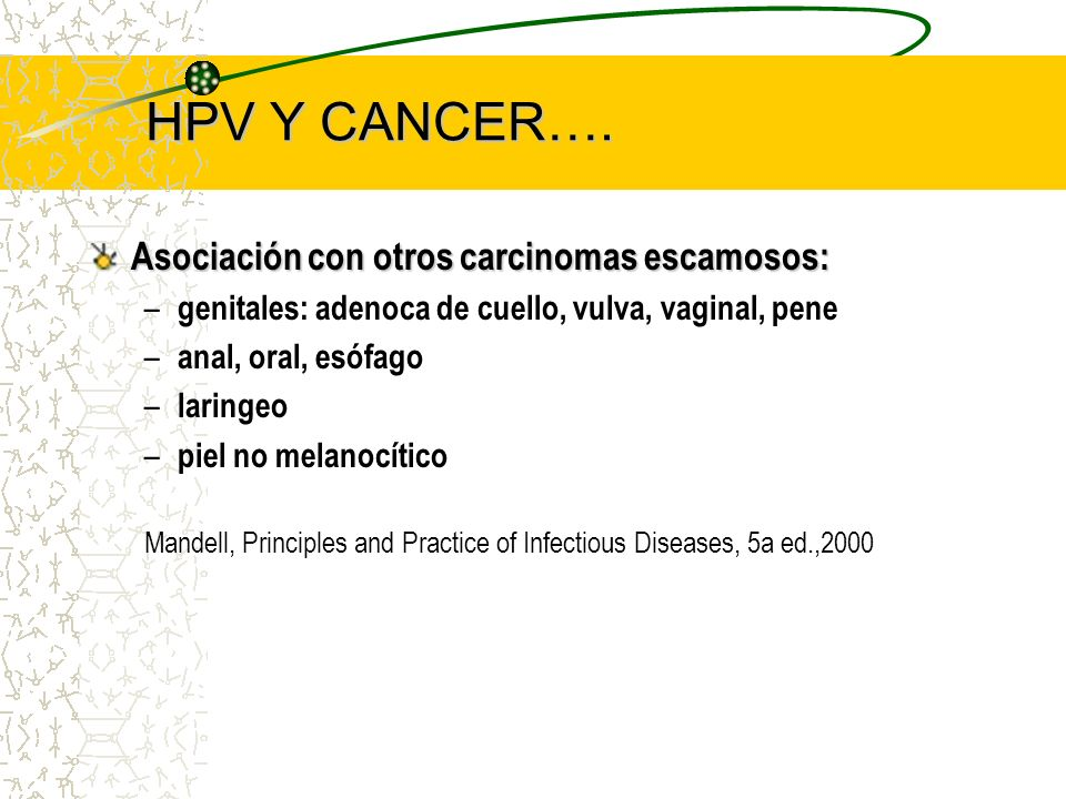 HPV Y CANCER…. Asociación con otros carcinomas escamosos: