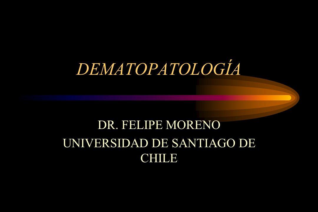 DR. FELIPE MORENO UNIVERSIDAD DE SANTIAGO DE CHILE