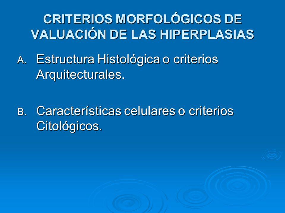 CRITERIOS MORFOLÓGICOS DE VALUACIÓN DE LAS HIPERPLASIAS