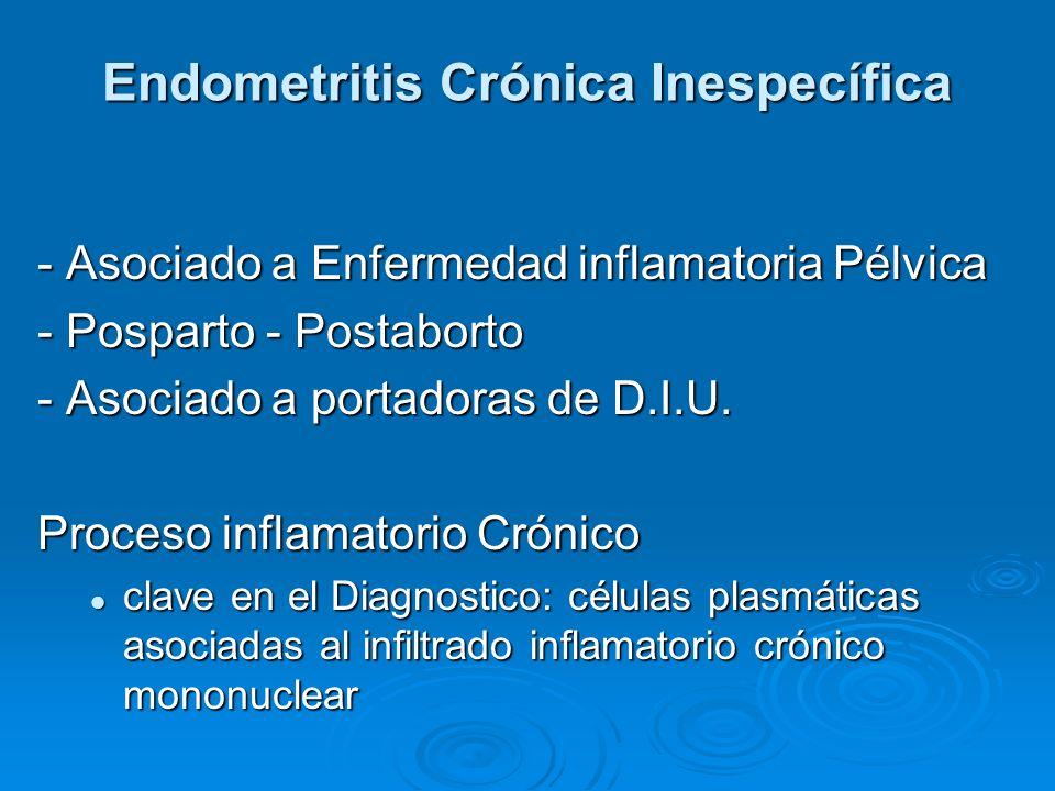 Endometritis Crónica Inespecífica