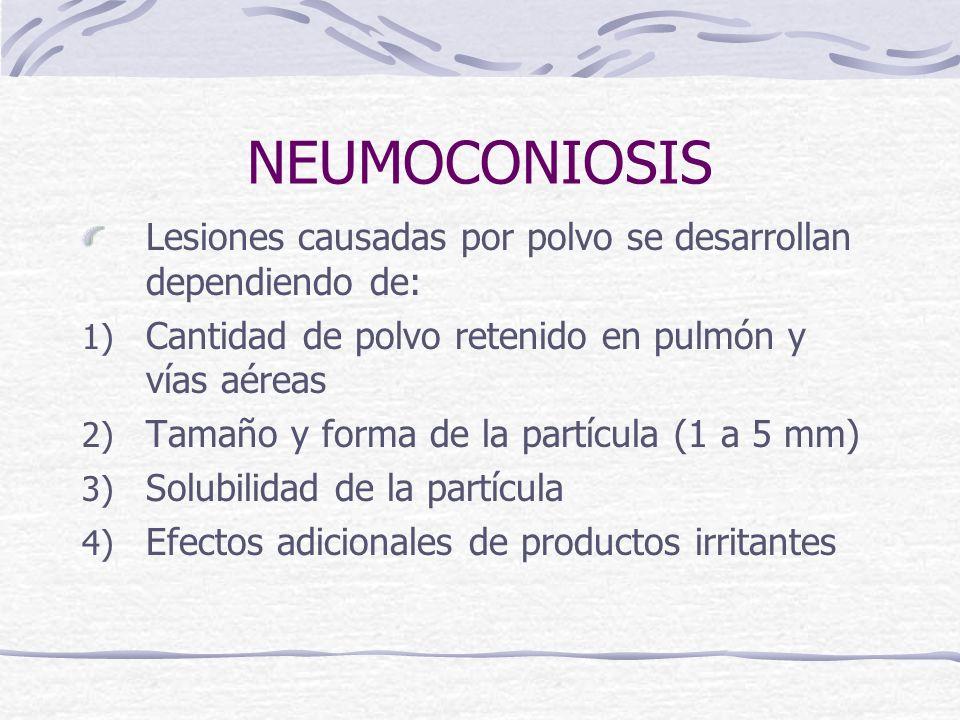 NEUMOCONIOSIS Lesiones causadas por polvo se desarrollan dependiendo de: Cantidad de polvo retenido en pulmón y vías aéreas.