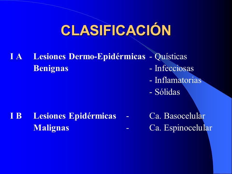 CLASIFICACIÓN I A Lesiones Dermo-Epidérmicas - Quísticas