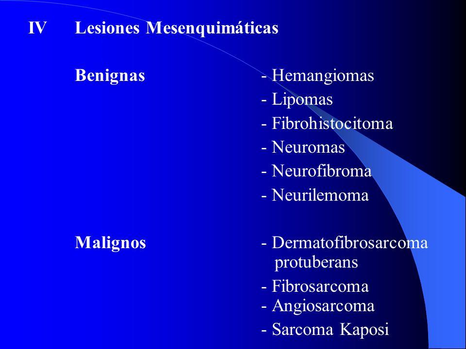 IV Lesiones Mesenquimáticas