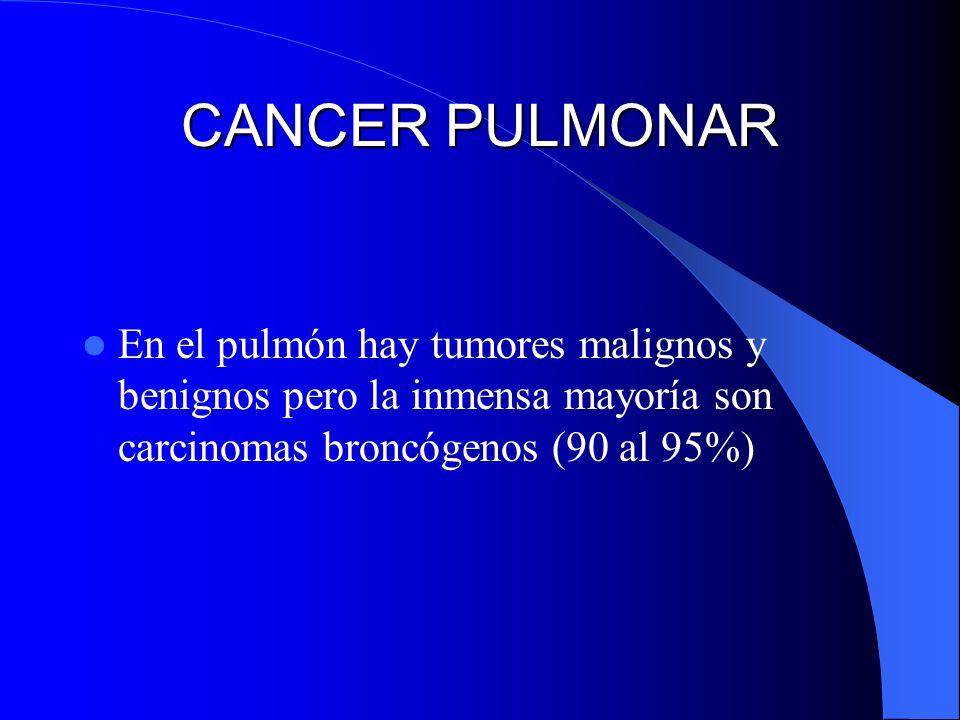 CANCER PULMONAREn el pulmón hay tumores malignos y benignos pero la inmensa mayoría son carcinomas broncógenos (90 al 95%)