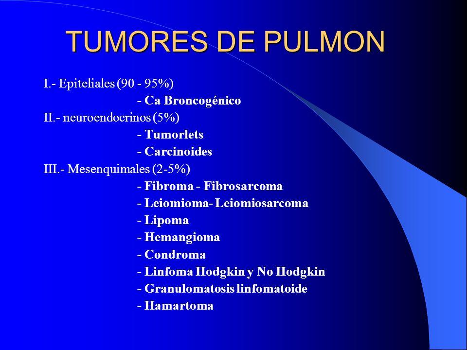 TUMORES DE PULMON I.- Epiteliales (90 - 95%) - Ca Broncogénico