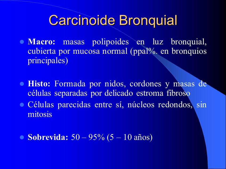 Carcinoide BronquialMacro: masas polipoides en luz bronquial, cubierta por mucosa normal (ppal%. en bronquios principales)
