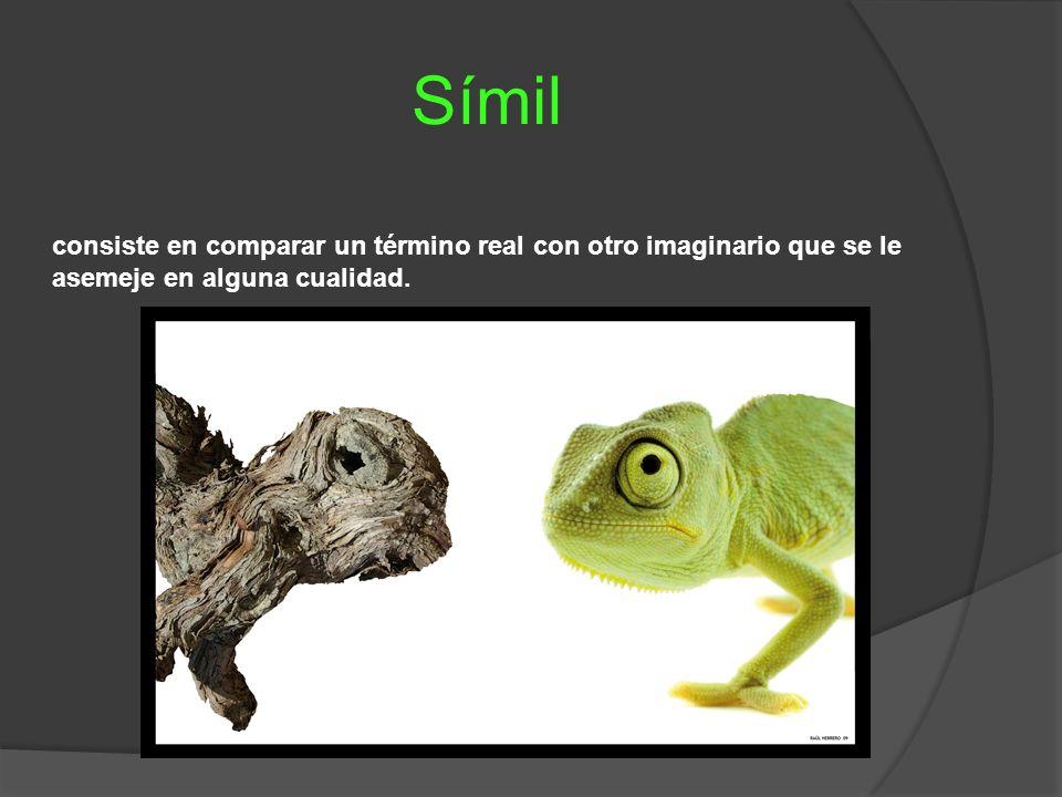 Símil consiste en comparar un término real con otro imaginario que se le asemeje en alguna cualidad.