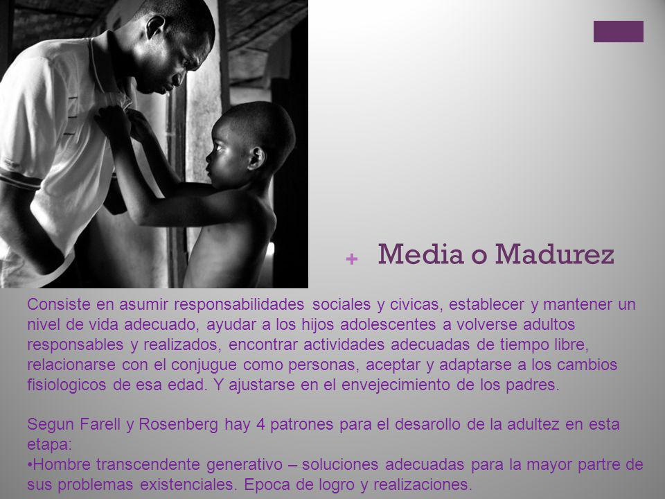 Media o Madurez
