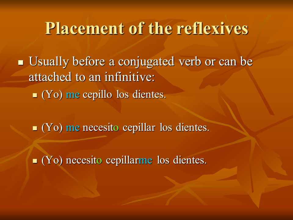 Placement of the reflexives