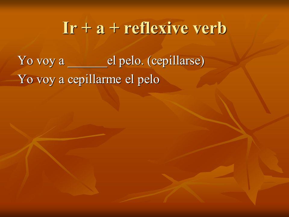 Ir + a + reflexive verb Yo voy a ______el pelo. (cepillarse) Yo voy a cepillarme el pelo