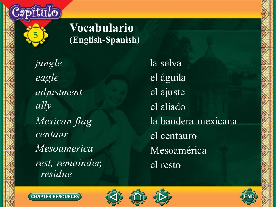 Vocabulario jungle la selva eagle el águila adjustment el ajuste ally